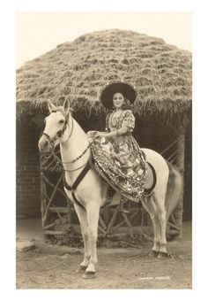 mexican cowgirl (charra)
