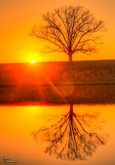 Theme: Flare | Title: Sunset Flare Over Water