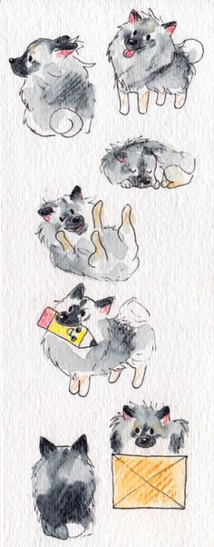 maybellehoney: A bookmark of our dog Henry I made for my mom for Christmas. :D