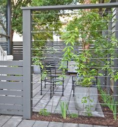 build your own trellis wire - Google Search