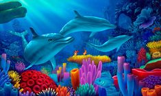 Google Image Result for http://www.mauiarts.com/images/Dolphin-Painting_Secrets-of-the-Sea.jpg