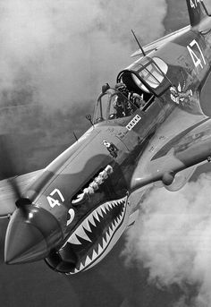 P-40 Warhawk of the AVG Flying Tigers / Panda Squadron. Gen. Claire Chennault would be so proud!