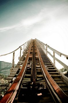 I love roller coasters