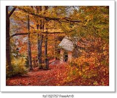 Autumn landscape - Cabin in the woods - Artwork  - Art Print from FreeArt.com