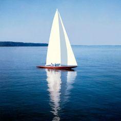 mane like the sea