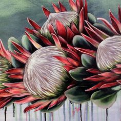 Protea Art, Protea Flower, Flower Images, Flower Art, Australian Native Flowers, Beautiful Flower Arrangements, Diy Canvas Art, Botanical Illustration, Botanical Prints
