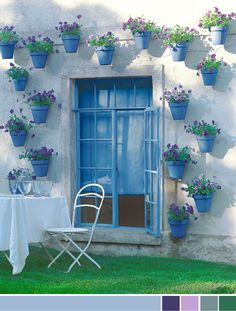 blue pots -wall garden