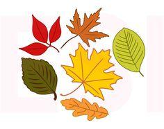 Autumn Fall Leaves SVG DXF EPS cutting files por ESIdesignsdigital