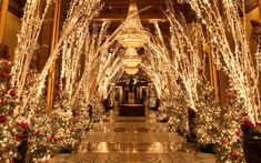 It's the most wonderful time of the year to visit these hotels with over-the-top Christmas displays and events.