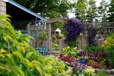 The front garden/entrance to back yard. This Hamburg garden in the Boston Hills of Buffalo's Southtowns is a treat. Front Garden Entrance, Entrance Gates, Desert Botanical Garden, Botanical Gardens, Hosta Gardens, Building A Fence, Porch Garden, Climbing Vines, White Picket Fence
