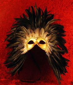Adore the black feathers with the bright gold mask