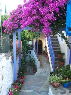 santoriniblog:  Pretty greek street - Alonissos island