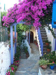 santoriniblog:  Pretty greek street - Alonissos island