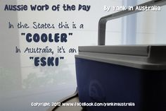 "AUSSIE WORD OF THE DAY: In the States this is a ""cooler"". In Australia, it's an ""eski"". #yankinaustralia #australia #aussielingo Australian Gifts, Cruise Door, Collective Nouns, Australia Living, Word Of The Day, Story Of My Life, Things To Know, Homeland, Wines"