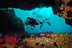 Scuba Diving with Go Dive Lanta Ko Lanta, Krabi Thailand.