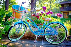 Personal: Electra Blue Bike with Betty Basket Liner