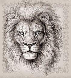 45 best simple lion head tattoo art images  lion head