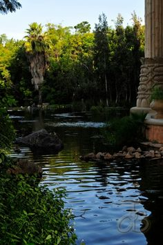 Gardens at the Lost City palace, Sun City. Photo by JdB North West Province, Sun City, Holiday Resort, Lost City, Rest Of The World, Nature Reserve, Africa Travel, Countries Of The World, Where To Go