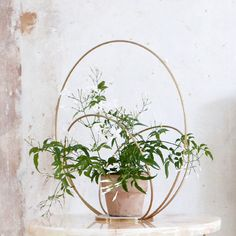 The Circle Podium is a perfect way to display plants or other pieces and can both hang or stand. It is made from brass and comes in two sizes. Danish Design, Plant Decor, Centerpieces, Brass, Wreaths, Display, Canning, Interior Design, Plants