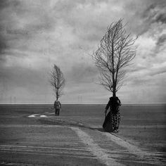 Separation for all by Hossein Zare
