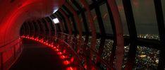 Tsukiji, Tour Eiffel, Tokyo Skytree, Second Floor, Stairs, Travel, The Neighborhood, Stairway, Viajes