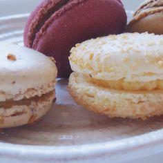 PARIS Gourmet macaron French Cafe, Gelato, Macarons, Cheesecake, Muffin, Paris, Chocolate, My Favorite Things, Breakfast
