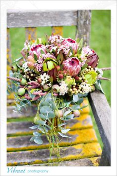 love the proteas ..Briars Country Lodge – Bowral | Vibrant Photography | Weddings & Portraiture