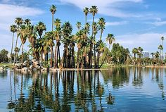 Encanto Park, on of the best parks in the valley. 222 acres with picnic areas, a lagoon with paddle boats, swimming pool, nature trail, urban fishing, two golf courses, and baseball diamonds. and are busy all year long. Also home of Enchanted Island Amusement Park. 2605 N. 15th Ave. in Phoenix.