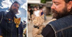 Biker Saves Badly Burned Kitten, Continues Cross-Country Trip With Him | Bored Panda