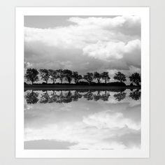 Mirrored Trees Art Print by Ally Coxon - $20.00