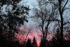 Sunset in Marengo      #sunsetinmarengo #sunset #sunsetphotography