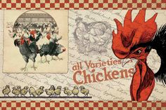 Check Chicken Painting Print on Wrapped Canvas