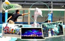 S$29.00 - Only $29 For Sentosa Land