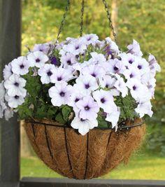 38 best Blumenampel selber machen images on Pinterest | Do crafts ...