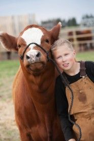The Search for Truth in Humane Farming  By Free From Harm Staff Writers | June 10, 2012