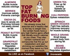 Top fat burning foods