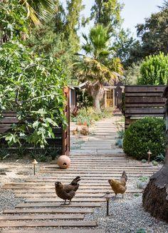 Modern Cottage, Garden Cottage, Exterior Remodel, Garden Borders, Urban Farming, Bird Houses, Homesteading, Paths, Seattle