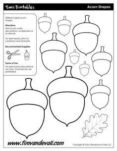 Acorn Templates / Acorn Shapes – Tim's Printables
