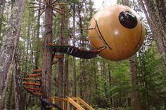 Sur l'île de Vancouver au Canada, le menuisier Tom Chudleigh a fabriqué à la main cette maison dans les arbres qui peut accueillir jusqu'à 4 personnes