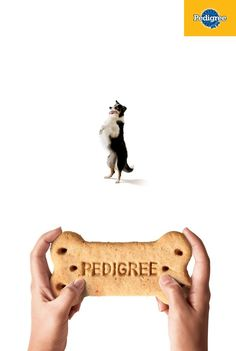 According to this print ad from AlmapBBDO, it seems Pedigree's dog biscuits could do wonders for your pooch's ability to do tricks.