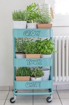 Ein mit frischen Kräutern und Pflanzen bestellter IKEA Servierwagen