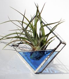 Stained Glass Air Plant Holder  Sconce  Medium Size  by LAGlass, $19.75