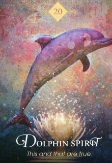 I was asking to see Dolphins! Animal Meanings, Animal Symbolism, Animal Spirit Guides, Spirit Animal, Native American Zodiac Signs, Spirit Signs, Animal Cards, Oracle Cards, Tarot Decks