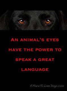 a great language