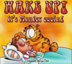 Garfield I Hate Mondays Monday Morning Humor, Morning Memes, Good Morning Funny, Monday Humor, Good Morning Good Night, Good Morning Wishes, Good Morning Quotes, It's Monday, Happy Monday