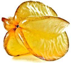 Carambola, averrhoa carambola, the beautiful yellow fruit! Photographer Marita Toftgard.