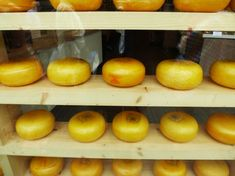10 Tips on food preservation. I LOVE this lady's blog! She is so informative! Kellene Bishop, Preparedness Pro