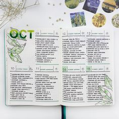 "1,328 Likes, 5 Comments - Federica • Bullet Journal (@feebujo) on Instagram: ""Layout of this week, all green! I decided to use this layout for all the busy weeks (and these days…"""