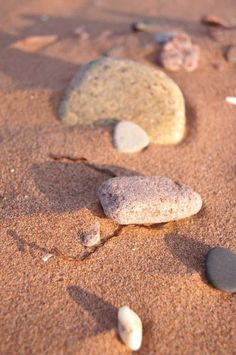 Treasures in the Sand Submitted by: LianeP.  Location: Cousins Shore, Prince Edward Island