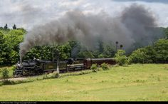 A Norfolk Southern steam excursion powered by TVRM's Southern Railway 2-8-2 #4501 and NS SD40 #3170 dressed in Southern tuxedo paint brings their train through the rural community of Gunton Park on its way from Radford,VA to Bristol.